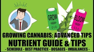 Marijuana Nutrient Guide Schedule Explained - Growing Cannabis 201: Advanced Grow Tips