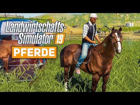 LS19: PFERDE - Pflege, reiten und mehr! | Farming Simulator 2019 Spotlight