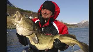 Рыбалка в тромсе норвегия на 10 дней