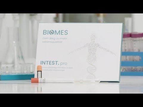 INTEST.pro von BIOMES: Die Darmflora-Analyse für zu Hause