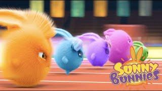 Sunny Bunnies | A corrida | Desenhos animados | WildBrain em Português