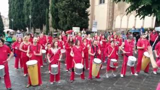 preview picture of video 'Giornata mondiale contro l'omofobia 2014 - Bandao a Siena'