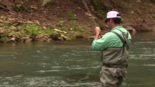 Fly Fishing with Damon Spurgeon
