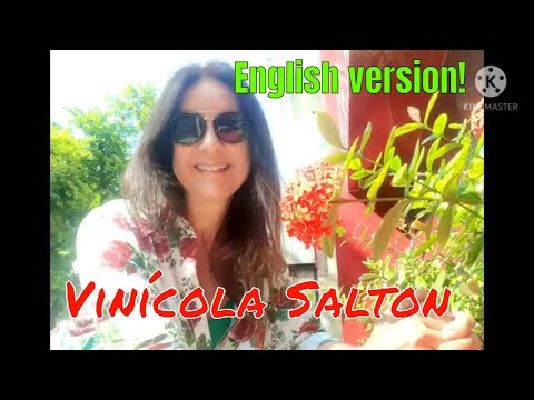 VINHOS SALTON E VINCOLA FAMLIA SALTON