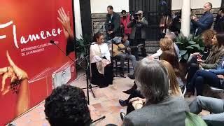 María Terremoto por tientos-tangos en el Instituto Andaluz del Flamenco
