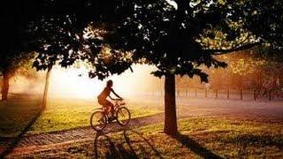 США. Велопрогулка.
