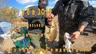 Отчеты о рыбалке с ахтубы харабали 2020 сентябрь