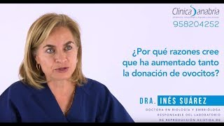 Clínica Sanabria - Donación de Ovocitos: ¿por qué ha aumentado ésta técnica? - Clínica Sanabria Granada
