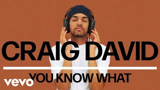 Craig David   You Know What (Official Audio)