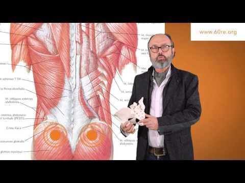 Schlüsselbein Schulter Osteochondrose