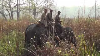 preview picture of video 'Manas national park picnic spot in Assam (INDIA)'