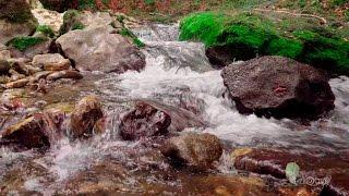 Живая вода. Красивая природа под приятную музыку.