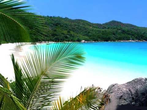 sunlight des tropiques