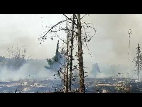"""שריפה רחבת ממדים באמפי פארק באלעד. ב""""ה לעת עתה לא דווחו נפגעים"""