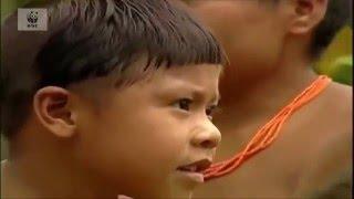Дикие племена - Неконтактировавшие Племена Amazon И�