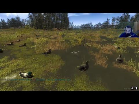 Come trattare vermi a mezzi di 1stauto.ruy - A causa di eruzione di vermi