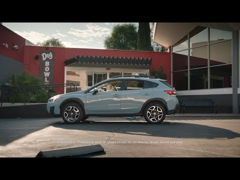 Subaru Dog Tested I Subaru Commercial I Drive Away