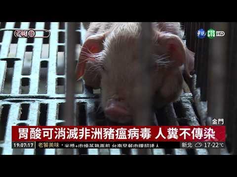 非洲豬瘟襲金門 豬肉製品禁輸台14天  華視新聞 20190104