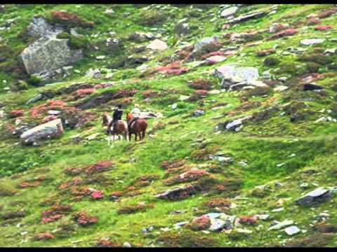 ORTNERHOF  Wanderreiten im Nationalpark Hohe Tauern