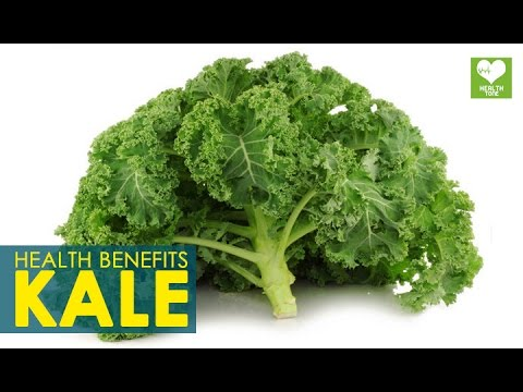 Video Kale - Health Benefits | Super Food