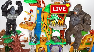 Download Video DuDuPopTOY Live Streaming MP3 3GP MP4