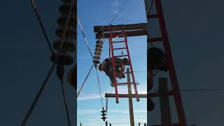 NLC H Structure Ladders Demo 2018