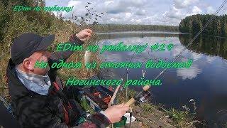 Отчет о рыбалке в ногинский район