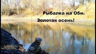Где в новосибирске хорошо клюет рыба