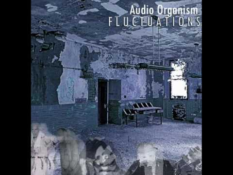 Audio Organism - Fluctuations