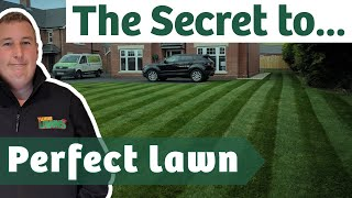 How to overseed an existing lawn for the BEST RESULTS