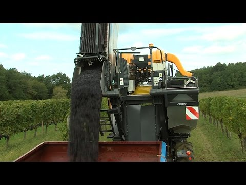 Grape Harvesting Machine Optimum