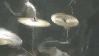 Video Ropucha - Noc v Lihu
