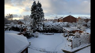 Garden Drone Cruising in the Afternoon Snow in HD FPV - UR85X HD pm no audio
