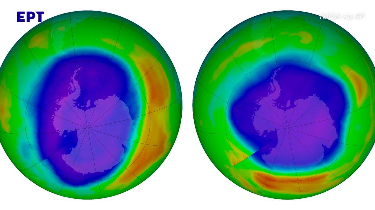 Ο πλανήτης σε κίνδυνο: Η αύξηση της θερμοκρασίας και οι επιπτώσεις στο οικοσύστημα| 08/01/2021 | ΕΡΤ
