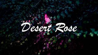 [Lyrics] Lolo Zouaï   Desert Rose (Official Audio)