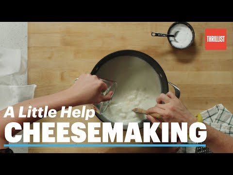 How to Make Cheese at Home || A Little Help: Cheesemaking