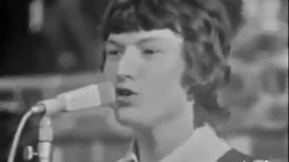 Spencer Davis Group - It's Gonna Work Out Fine Live