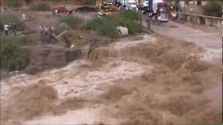 preview picture of video 'Perro Rescatado que es arrastrado por el Rio Sonoyta.wmv'