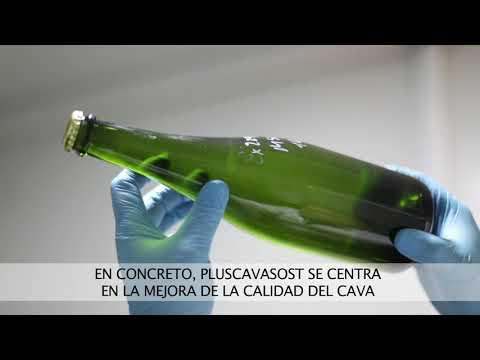 Proyecto Pluscavasost.