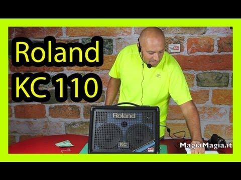 Amplificatore Roland KC 110  -  30 watts (15W+15W)