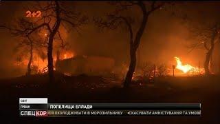 Лісова пожежа у Греції забрала щонайменше 80 життів