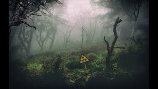 S.T.A.L.K.E.R. - Call of Chernobyl [stason174] - Тайна Зоны, часть 6