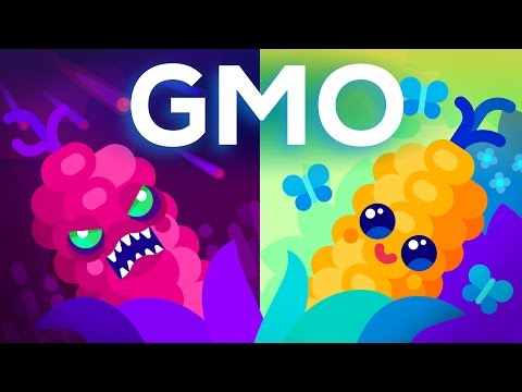 Are GMOs Good or Bad? Genetic Engineering & Our Food