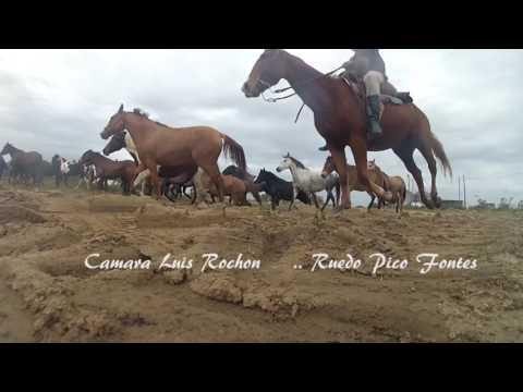 Ruedo Pico Fontes Cardona Soriano
