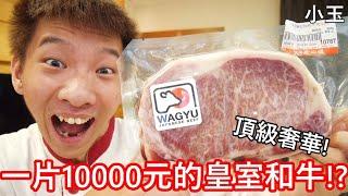 【小玉】頂級奢華!一片台幣10000元的皇室和牛!?【日本天皇御用等級】
