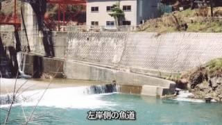 清流 梓川の恵み 中信平二期農業水利事業