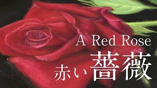 赤い薔薇【サンプル制作】 (30cm×30cm)