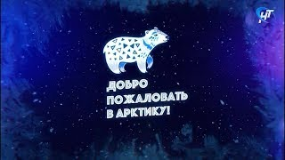 В Великом Новгороде состоится масштабный фестиваль «Доброе пожаловать в Арктику»