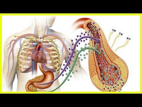 Und Isophaninsulin Insulin glargin