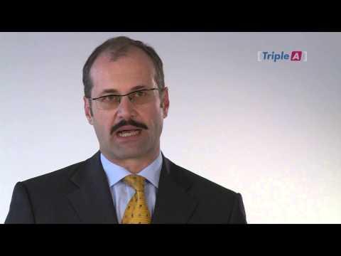 Univ. Doz. h.c. Mag. Thomas Radil/ Tiger Consulting/ ehem. Bankrisikomanager